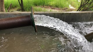Water from the Tubewell - Punjab