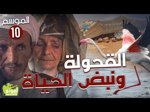 ✅ Amouddou TV 151 أمودّو / القحولة ونبض الحياة