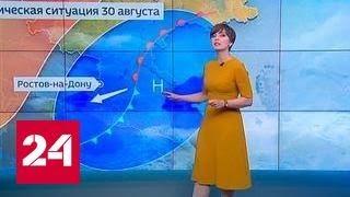"""""""Погода 24"""": в Ростовской области на 1 сентября объявили штормовое предупреждение"""