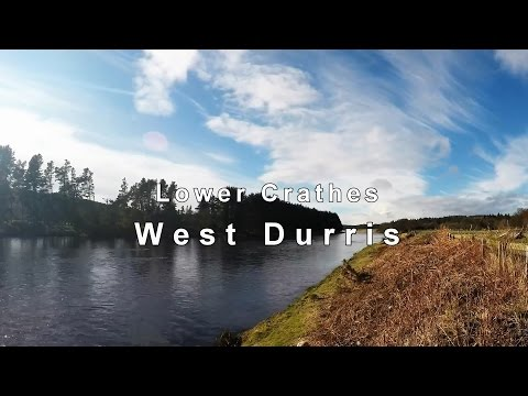 Lower Crathes West Durris - River Dee Salmon Fishing