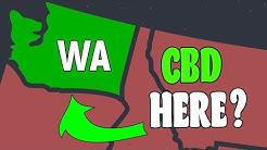 Can You Buy CBD Oil In Washington State - Is CBD Legal In Washington?