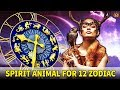 Spirit Animal Bring Lucky for 12 Zodiac Signs - Know Everything