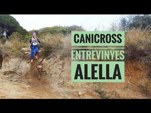 canicross alella