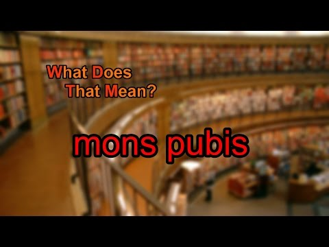 What does mons pubis mean?