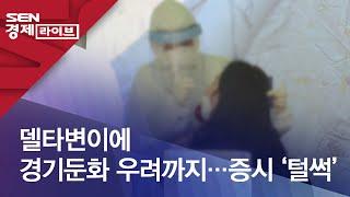델타변이에 경기둔화 우려까지…증시 '털썩'