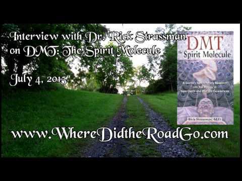 Dmt The Spirit Molecule Book Pdf