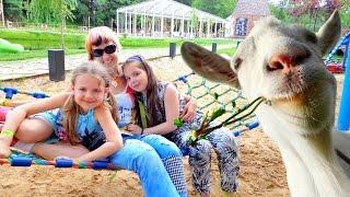 Ферма животных. Развивающее видео для детей.