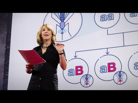Gene editing can now change an entire species -- forever | Jennifer Kahn