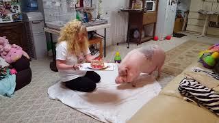 Sammy The Hammy The Smiling Pigs 12th Birthday party 🎉🎂🎈