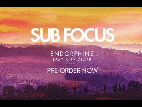 Sub Focus feat. Alex Clare - Endorphins (Tommy Trash Remix) (HD) mp3