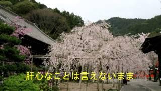 半崎美子 サクラ ~卒業できなかった君へ~ カラオケ