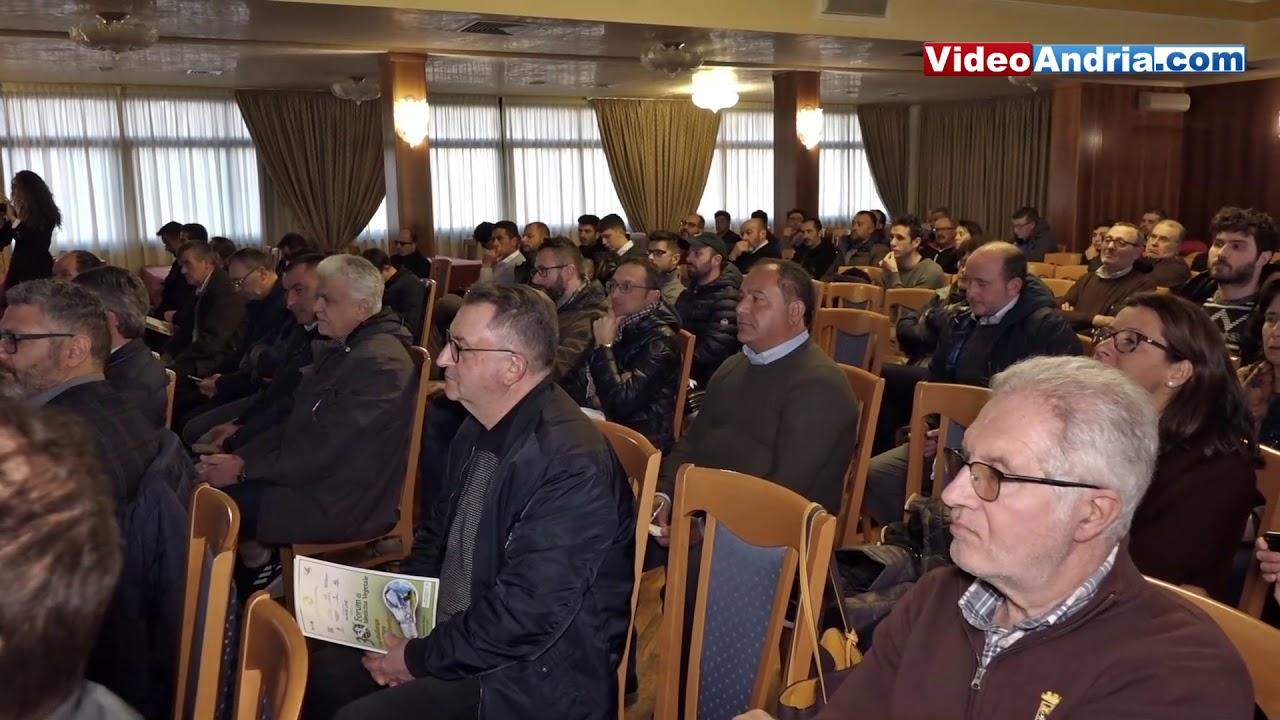 Andria: Vigna & Olivo 8^ edizione