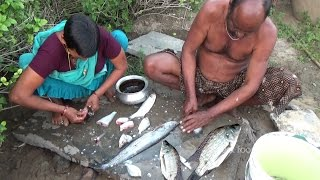Village Style Yummy Fish Curry in Couples | Street Food Catalog | Food Info | Village Food Factory