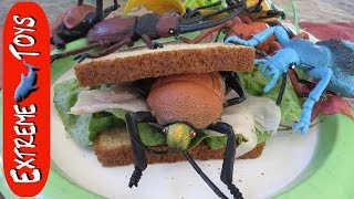 """Giant Bug Toys Attack Boy in the Kitchen! """"Big Toy Insect Collection"""""""