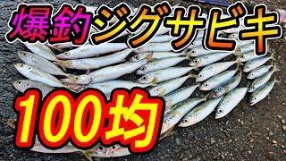 【爆釣】100均ジグサビキで釣りしたら鯉のぼり状態に !?『秋のアジ・サバ・カマス』