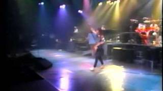REO Speedwagon -  Roll with the changes (live) video