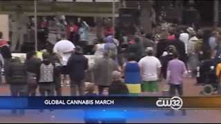 Global Cannabis March 2014 - Portland, Oregon - KGW