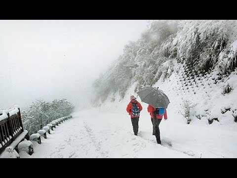Taiwan Snow Storm, Fish Cold Stunned & Roads Closed (524)
