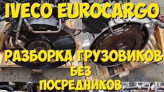 Двигатель IVECO EUROCARGO 8040.45 EVRORAZBORKA.RU +79384468254(Польско-Белорусско-Российская Разборка WWW.EVRORAZBORKA.RU +79384468254 Iveco Ивеко Stralis Стралис Eurotech Евротех Eurostar Евроста..., 2013-12-10T19:16:54.000Z)