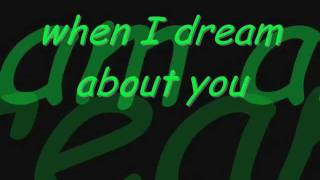 When I Dream About You w/ lyrics - Stevie B. (rock cover)