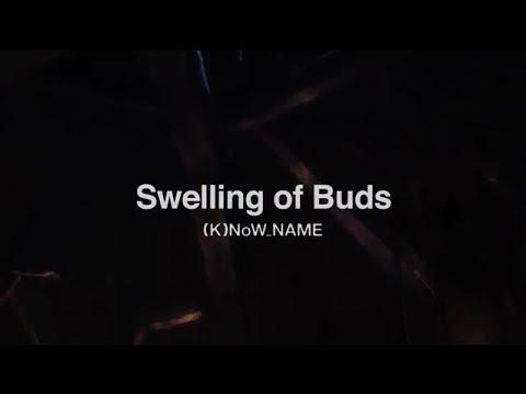 『灰と幻想のグリムガル』第9話挿入歌「Swelling of Buds」(K)NoW_NAME《アニメMV》