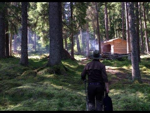 Nature Reserve Wildernes Hiking - Log Cabin Shelter Camping
