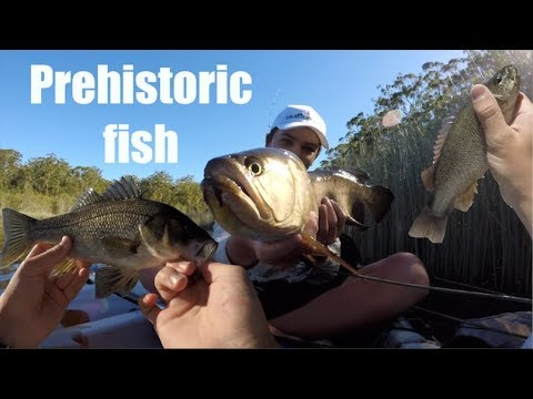Fishing for River MONSTERS (Saratoga & Bass) Catch &