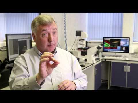 Portable 3D imaging microscopy