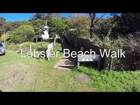 lobster beach