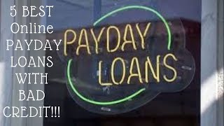 5 Best Online Payday Loans With No Credit Check And Bad Credit