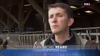invitation a la ferme JT TF1 Jean Michel Peard