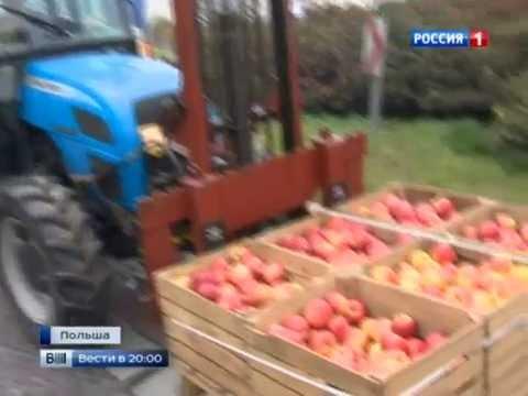 Польские фермеры заблокировали