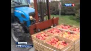 Польские фермеры заблокировали трассу в знак протеста