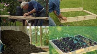 إنشاء أي حفر رفع السرير السماد على الأعشاب الضارة ، مع نصائح حول زراعة + رؤية نمو
