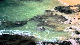Most BEAUTIFUL Music and Ocean Waves - Finding Paradise - Nature Escapes by Phillip Kanakis