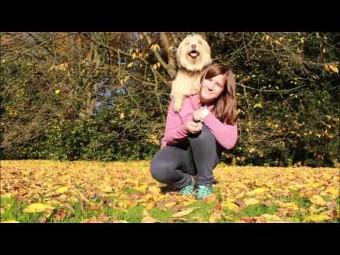 Alinga - Herbstvideo 2015