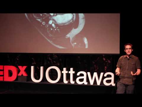 Cellular Behaviours: Andrew Pelling at TedxUOttawa - YouTube