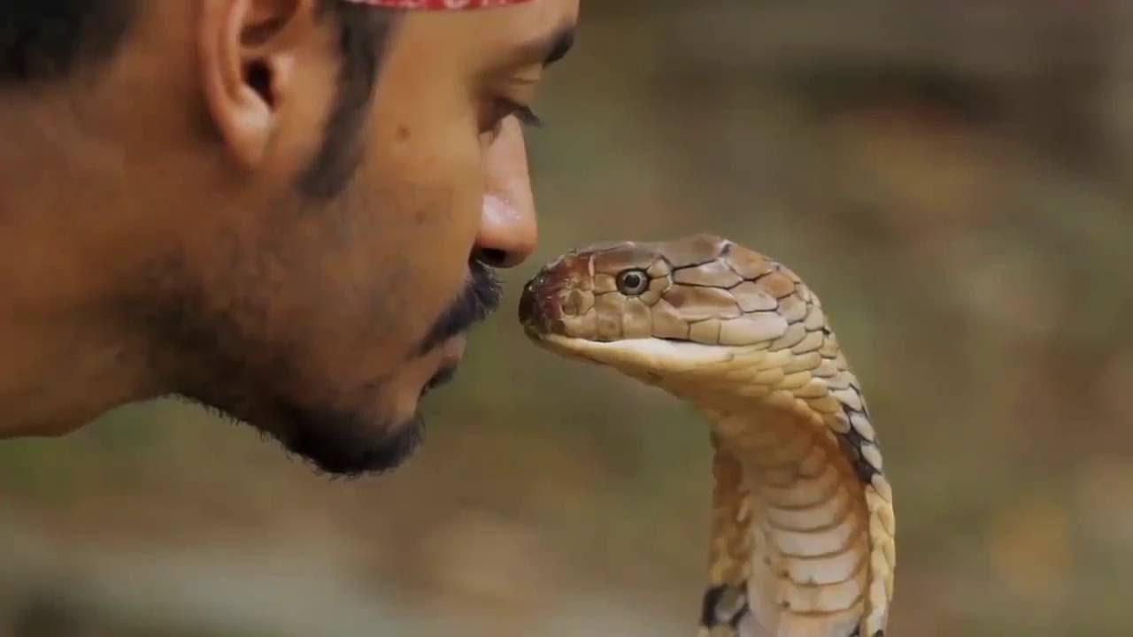 Поцелуй змеи - YouTube