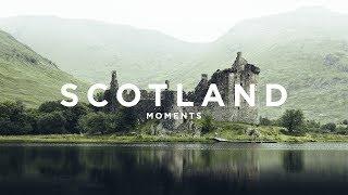 TRAMP CHAMP | MOMENTS @ SCOTLAND 4K