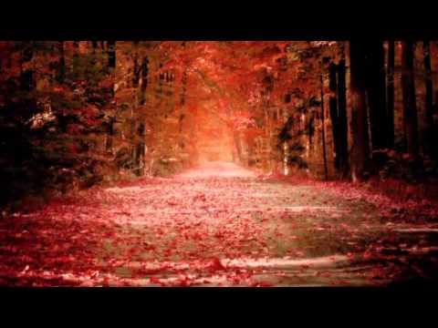 Слова из песни осень она не спросит осень она придет