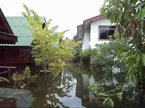 น้ำท่วมบ้านฆ้อง  2554.wmv