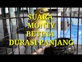Suara Monty Betina Durasi Panjang  Mp3 - Mp4 Download