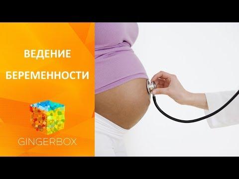 Ведение беременности: бесплатная женская консультация или платное ведение беременности?