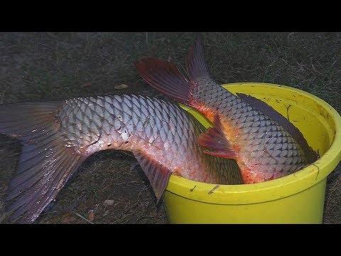 Рыбалка. СНАСТИ С