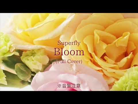 Superfly/Bloom(2018.10Full Cover)