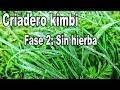 Proyecto Criadero Kimbi la hierba segada