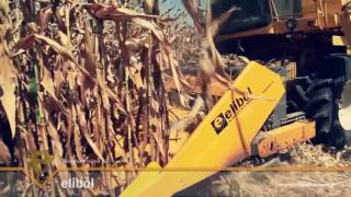 Corn Harvesting Table