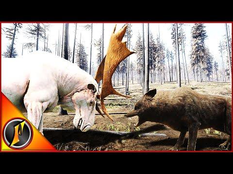 Yukon Valley Wolf Hunt! | A Pair Of Rares!