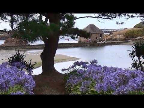 France Brittany, Ile de Bréhat Island Ploubazlanec