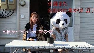 秋田県内にクリーニング店を16店舗出店しているシーガルジャパンから...